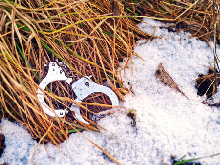 Steel handcuffs are in the yellowed grass.