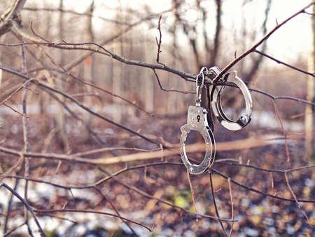 Stahlhandschellen hängen an einem Ast ohne Blätter. Hintergrund des Herbstes oder des Winterwaldes. Standard-Bild - 90420988