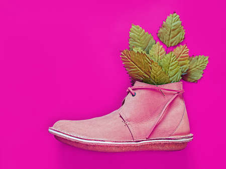 A male boot with leather laces is on an purple background. Green leaves stick out of the shoe. Creative background for advertising a shoe store, for a fashion blog or travel agency
