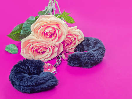 Fur handcuffs and a bouquet of delicate roses are on a purple background. Image for a sex shop banner Stock Photo