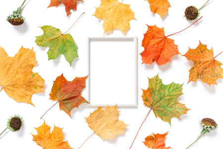 Autumn composition. An empty white photo frame is on a white background. Dried flowers, leaves and plants are nearby. Flat lay, top view, copy space.