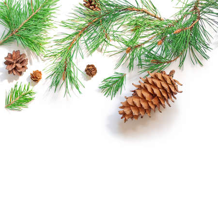 Christmas background. A large pine cone and branches are on a white background and are brightly lit by the sun. New Year, winter concept. Flat lay. Top view. Copy space.