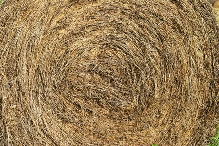 close up of round hay bale with spiral pattern photo