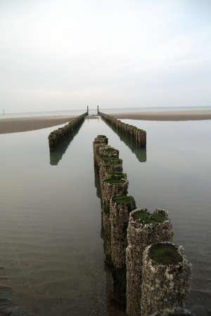 law breaker: Row of poles in the water