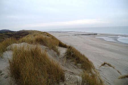 oversight: Dutch seascape: dunes, wave breakers, beach and sea