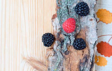 Closeup of ripe blackberries and red pink raspberries on old tree bark, on light wooden board background, card, copyspace Stockfoto