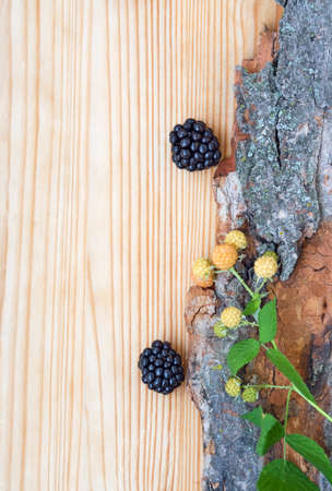 Closeup of ripe blackberries and unripe raspberries with green leaves and stem on bark, on light wooden board background, funny card, copyspace photo