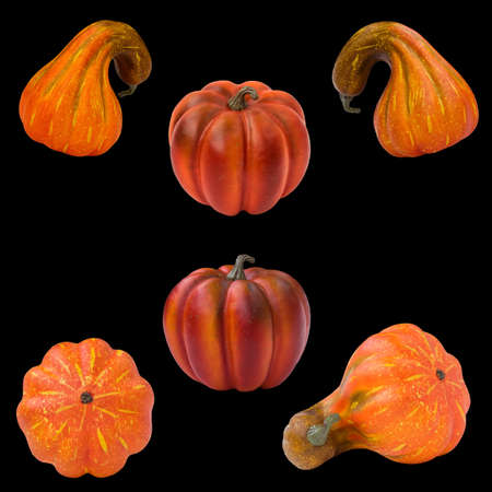 fall harvest: Set collection of six orange, yellow and red autumn fall pumpkins from different angle view, harvest, Halloween, isolated on black background