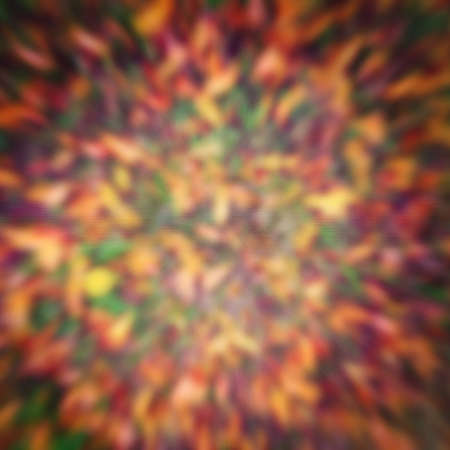 smeared: Beautiful colorful abstract stylized textured background, motion blur, card wallpaper with copyspace