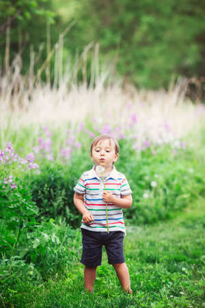 Portrait of a cute funny little boy toddler standing in the forest field meadow with dandelion flowers in hands and blowing them on a bright summer day, summer fun, copyspace for text