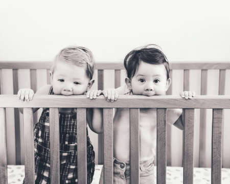 nine  months: Black and white portrait of two cute adorable funny babies siblings friends of nine months standing in bed crib chewing eating sucking wooden sides, looking in camera away, lifestyle everyday sweet candid moment