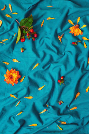 Colorful macro closeup background texture, yellow flowers with green leaves, petals, red berries on blue cotton bed sheet, view from above overhead, concept of season, spring, summer, autumn garden