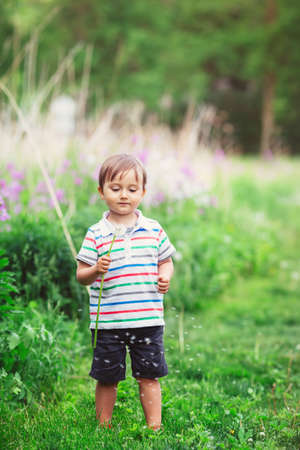 Portrait of a cute funny little boy toddler standing in the forest field meadow with dandelion flowers in hands and blowing them on a bright summer day Stock Photo