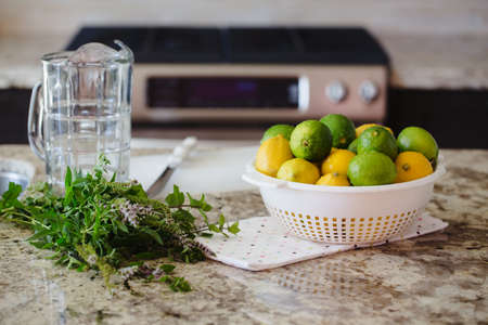 cravings: Group of citrus fruits yellow green lemons, limes, peppermint in dish on table ready for juice preparation, glass jar on background