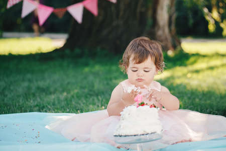 Portrait of cute adorable Caucasian baby girl with dark brown eyes in pink tutu dress celebrating her first birthday with gourmet cake looking in camera outside in park Stock Photo