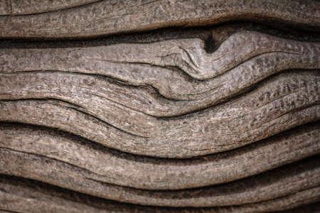 Closeup macro abstract texture background of old vintage wood, oak tree bark, wooden pattern waves Foto de archivo