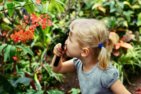 Portrait of cute adorable white Caucasian girl looking at plants flowers begonia through magnifying glass. Child with loupe studying learning nature. Early development education concept. Stock Photo