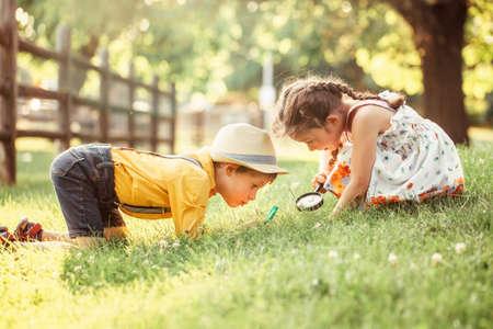 Nettes entzückendes kaukasisches Mädchen und Junge, die Pflanzengras im Park durch Lupe betrachten. Kinder befreundet Geschwister mit Lupe, die draußen die Natur lernt. Konzept der Kindererziehung. Standard-Bild