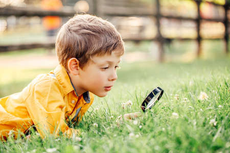 Adorable garçon caucasien mignon regardant l'herbe des plantes dans le parc à travers une loupe. Enfant avec loupe étudiant l'apprentissage de la nature à l'extérieur. Concept d'enseignement des sciences naturelles de l'enfant.