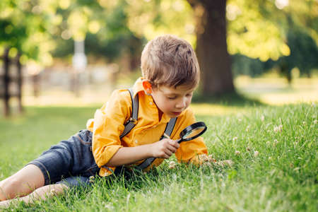 Cute adorable Caucasian boy looking at plants grass flowers in park through magnifying glass. Kid with loupe studying learning nature outside. Child natural science education concept.