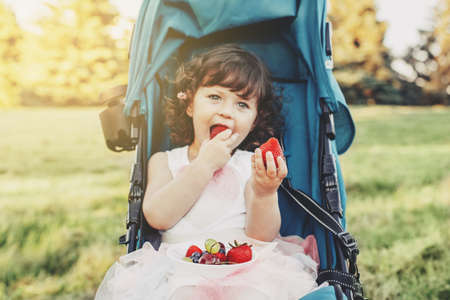 Cute adorable Caucasian toddler baby girl sitting in stroller outside and eating berries fruits. Funny child having healthy snack meal outdoors. Summer delicious tasty finger food for kids.