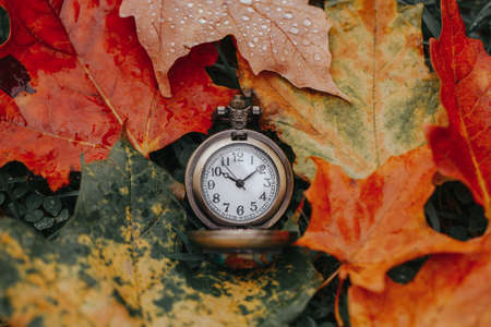 Retro vintage antique pocket watch clock lying on ground in autumn fall red yellow orange maple leaves. Concept of past or future time. 版權商用圖片