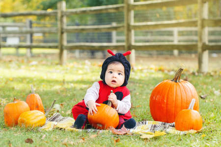 Portrait of cute adorable funny Asian Chinese baby girl in ladybug costume sitting in autumn fall park outdoor with yellow orange pumpkins. Halloween or Thanksgiving seasonal concept. 版權商用圖片