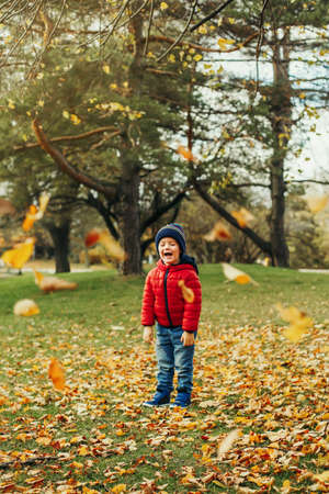 Cute adorable funny little toddler boy child screaming laughing in excitement in autumn fall park outdoor. Hilarious kid standing among flying falling yellow tree leaves. Seasonal activity mood. Stok Fotoğraf