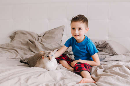 Portrait of Caucasian preschooler boy sitting on bed in bedroom at home and petting stroking oriental point-colored cat. Child with domestic furry feline animal. Cute candid childhood moment.
