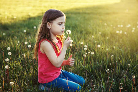 Cute adorable Caucasian girl blowing dandelions. Kid sitting in grass on meadow. Outdoor fun summer seasonal children activity. Child having fun outside. Happy childhood lifestyle.