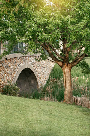 Beautiful landscape day view at with stone bridge at creek pond and large tree. Park forest nature. Seasonal summer scene with green foliage, grass and sunlight. Beauty in nature outdoor.
