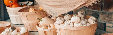 Red, white pumpkins in baskets by store on farm. Autumn fall harvest. Thanksgiving and Halloween holiday preparations. Colorful fresh seasonal vegetables. Web banner header.