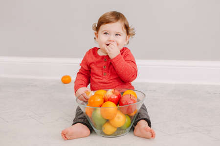 Cute adorable Caucasian baby boy eating citrus fruit. Finny child eating healthy organic snack. Solid finger food and supplementary food for children toddlers.