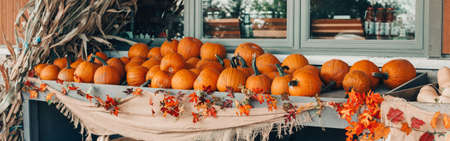 Red pumpkins in baskets by store on farm. Autumn fall harvest. Thanksgiving and Halloween holiday preparations. Colorful fresh seasonal vegetables. Web banner header.