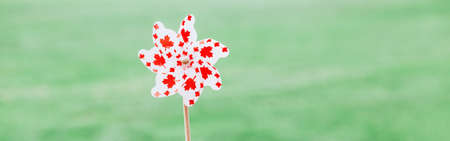 Windmill whizzer with red maple leaves on white background outdoor. Toy with Canadian flag symbol during Canada Day national celebration on July. Web banner header.