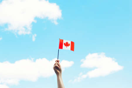 Closeup of woman human hand arm waving Canadian flag against blue sky. Proud citizen man celebrating national Canada Day on 1st of July outdoor.