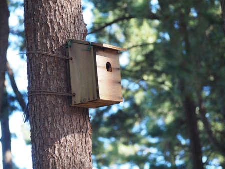 humane: Birdhouse Stock Photo