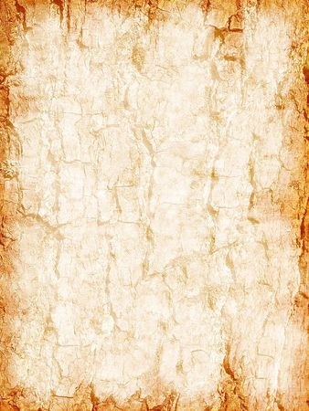 In the given photo the ancient clean sheet of the papyrus is submitted Imagens