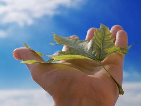 caes: La persona tiene en una mano una hoja en un fondo de nubes y el cielo