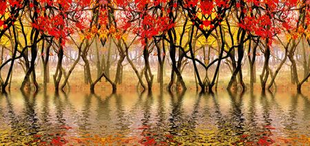 In this photo the beautiful autumn wood is shown Stock Photo - 643816