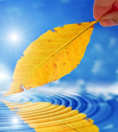 The person holds in a hand a leaf on a background of the cloudy sky Imagens