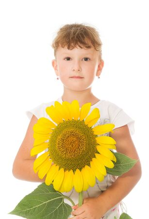 sunflower and children Stock Photo - 1528044