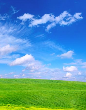 green grass on a blue sky and white clouds backgrounds