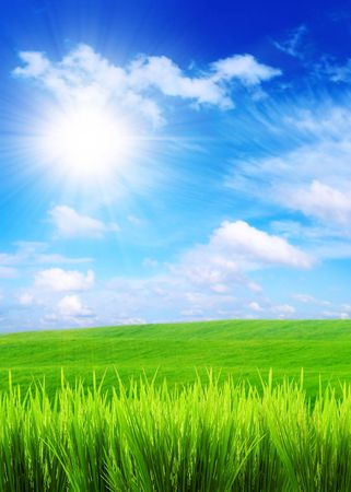 green grass on a blue sky and white clouds backgrounds Imagens - 2048752