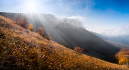 yellow autumn tree with fog mountain and bright sun Stock Photo - 10611226