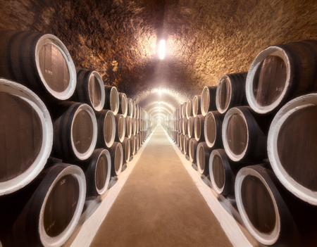 vino: Warehoused barrels in the wine cellar