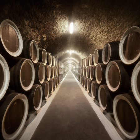 Warehoused barrels in the wine cellar