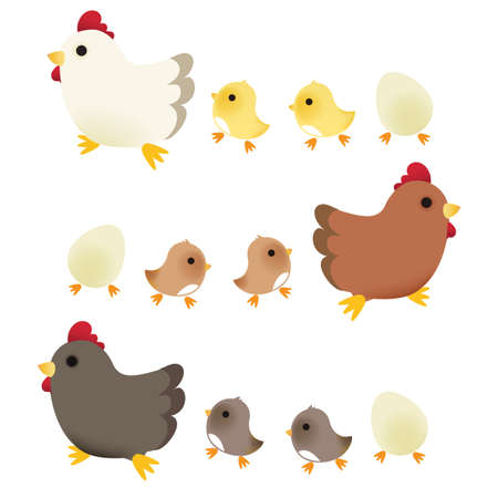 chicken coop: Cute Chicken   Illustration