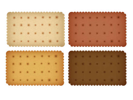 wafer: Biscuit Cookie Collection Cracker Vettoriali