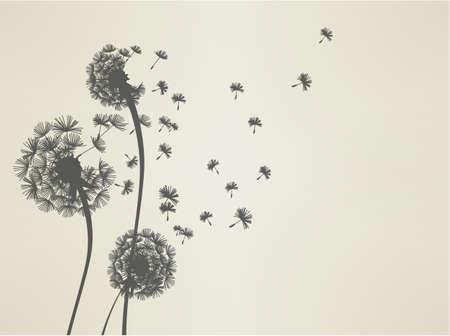 sillouette: Dandelion  Illustration